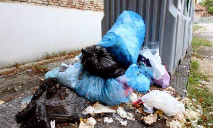 """<span class=""""entry-title-primary"""">Újvidék: jótékonysági hulladékgyűjtés</span> <span class=""""entry-subtitle"""">Újvidék, Duna rakpart, november 26., Kezdés: 11.00</span>"""