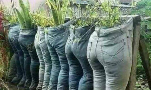 Itt a tavasz, kertészkedjünk!