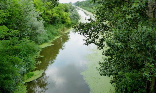 Szerb-magyar vízgazdálkodási projekt indult a Dél-Alföldön és Vajdaságban