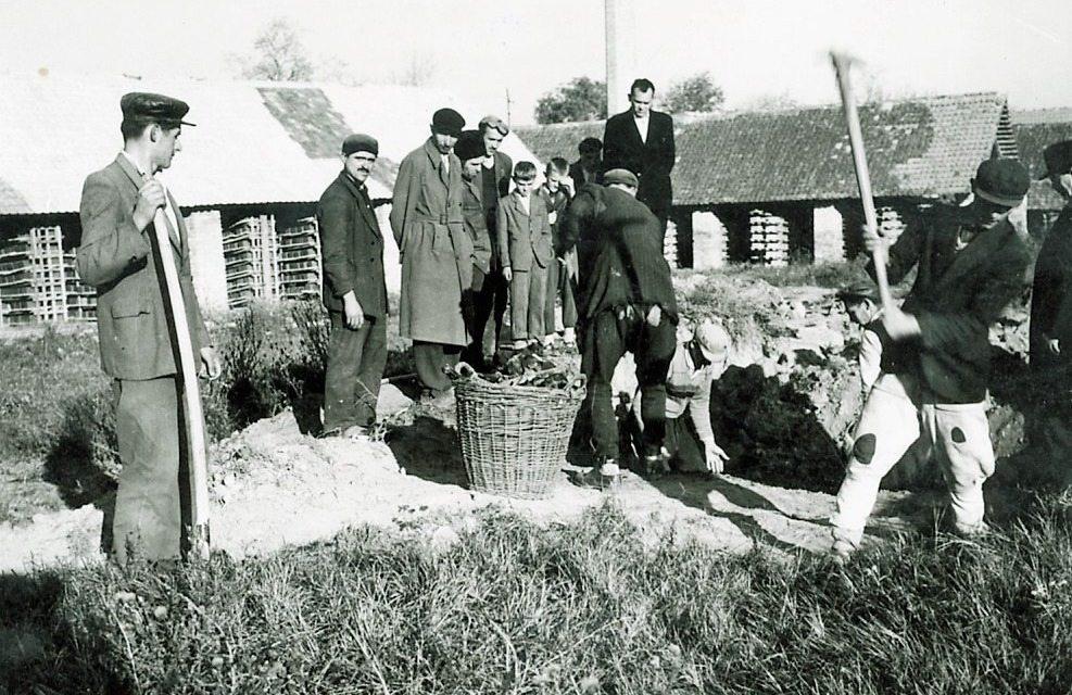 Heimer György: Német jelentés a cservenkai vérengzésről