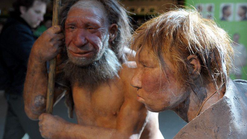 Tüzet használt az eszközkészítéshez a neandervölgyi ember